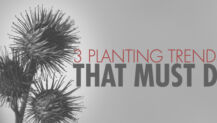 3 Planting Trends That Must Die