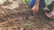 Beyond Bi-vo: Planting and POLYvocational Life
